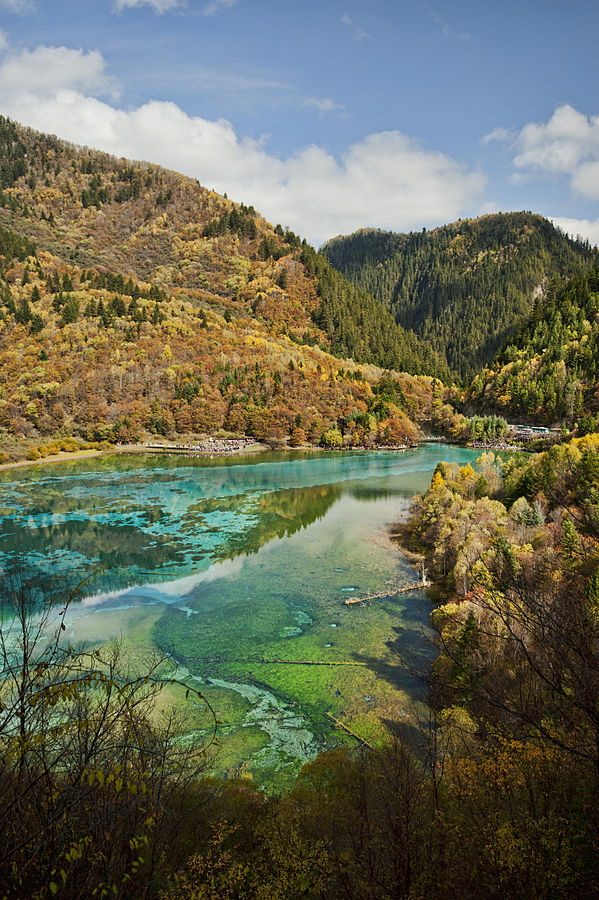 jiuzhaigou valley national park: Giant Panda Mega Reserve